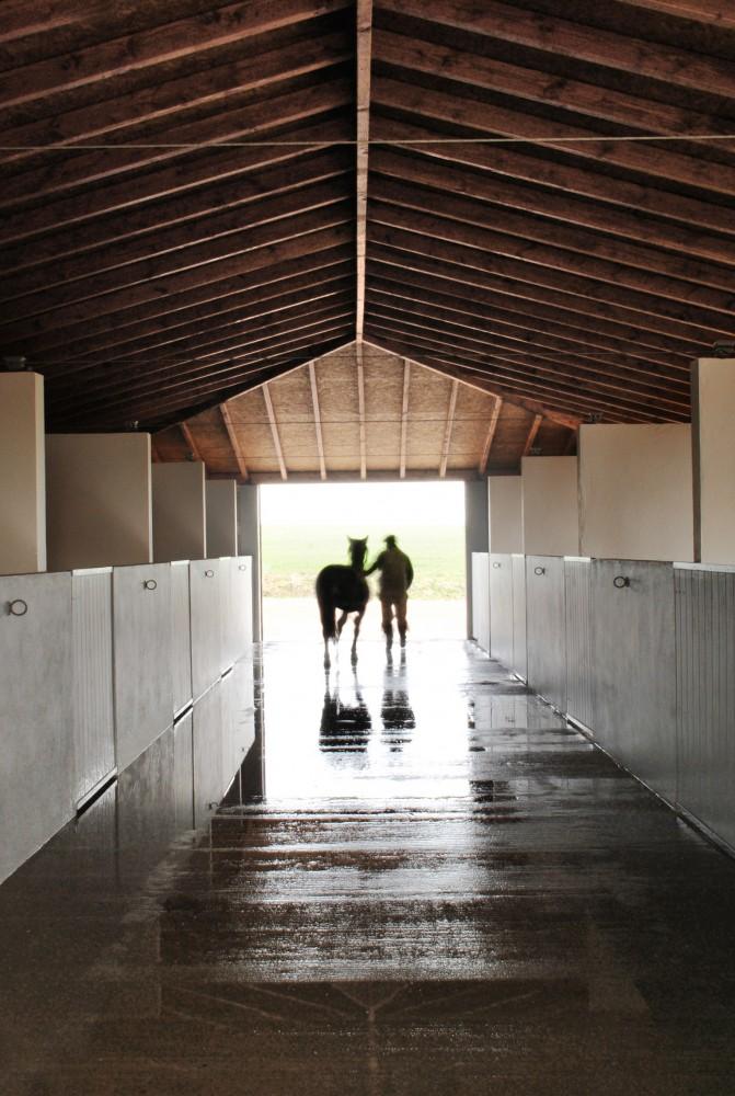 www.pegasebuzz.com ⎪ Dream Barns : Solana Stables