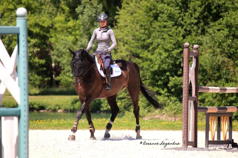 www.pegasebuzz.com | Écuries Olivier Guillon par Roxanne Legendre