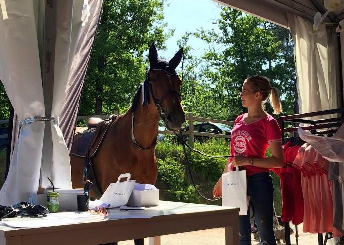 Les chevaux peuvent également s'habiller chez Harcour !