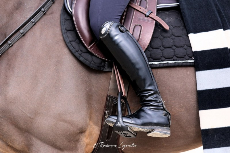 www.pegasebuzz.com | Equipement du cheval : étrier Sport Flex Royal Rider Stirrups.