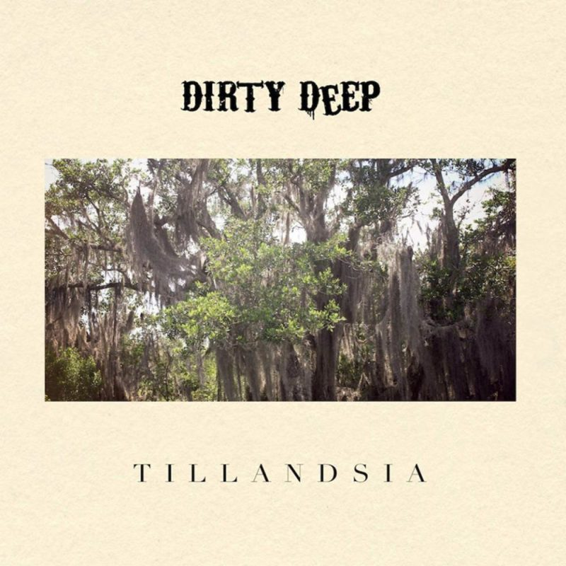 Pochette de Dirty Deep - Tillandsia
