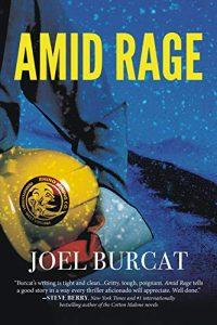 Amid Rage by Joel Burcat