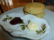 Vegan scone, Muir's Tea Room, Sebastopol, California