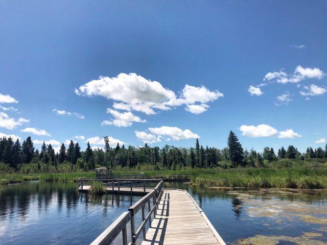 #TravelTuesday – Ominik Marsh Trail