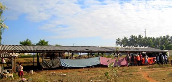 13.1 long shed