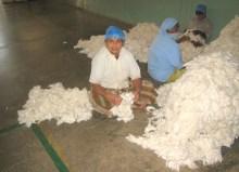 17.4 loose cotton on floor