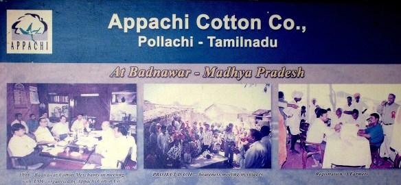 17.8 sign Appachi Cotton - Copy