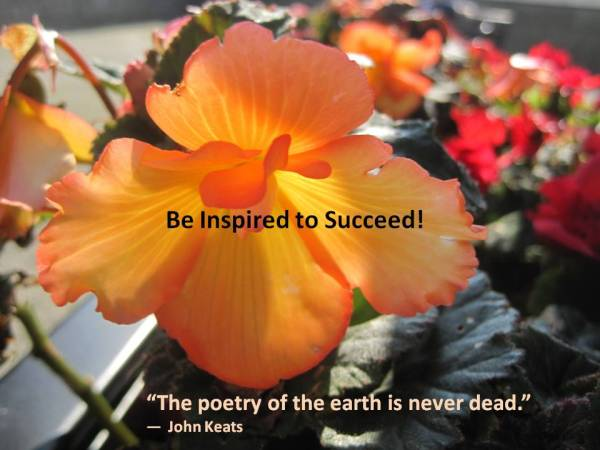 Success be inspired