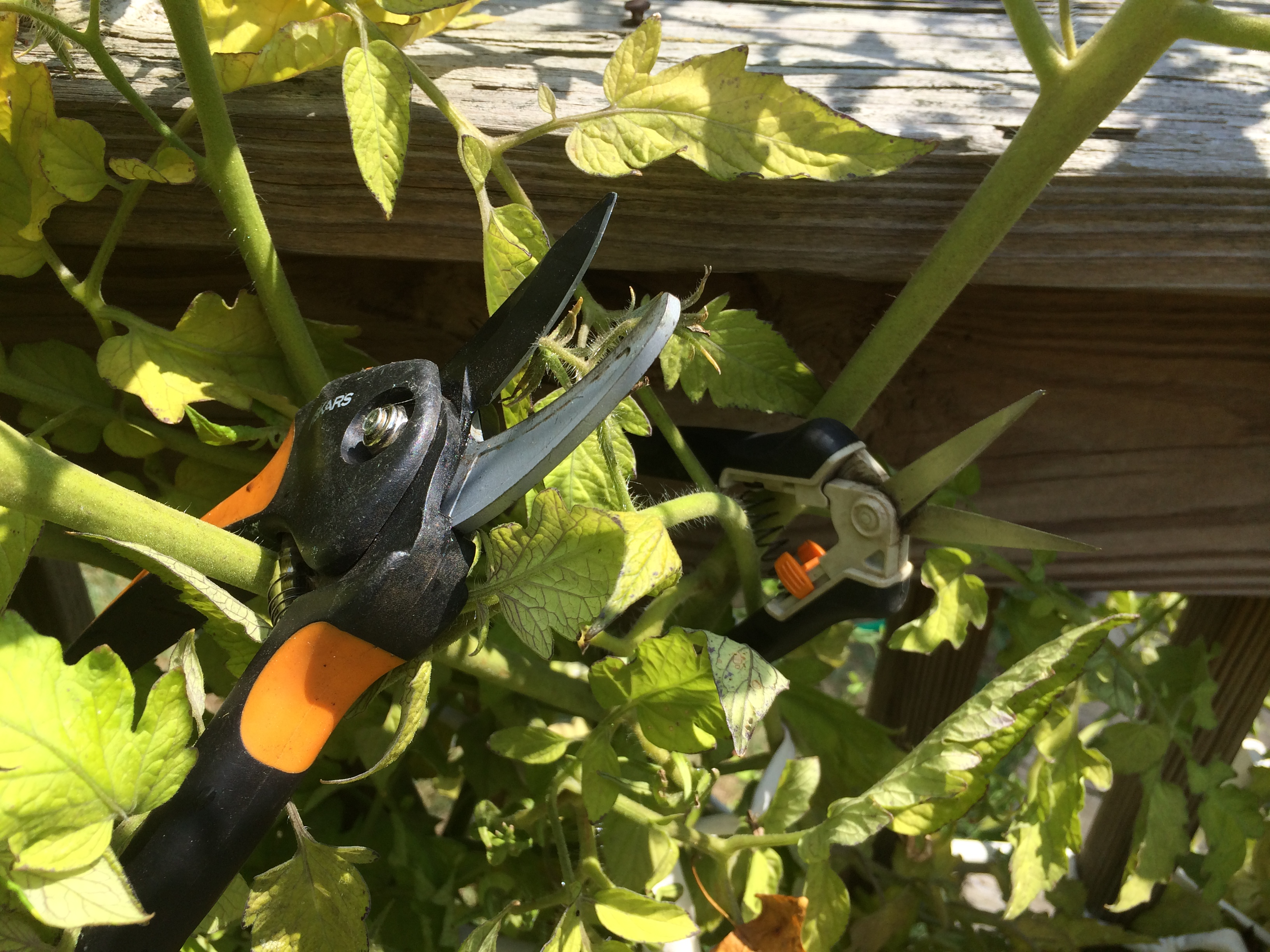 Donate Used Garden Tools To Support Washington Dc Metro