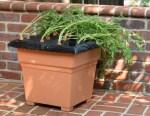 EarthBox Root & Veg Garden Kit, photo courtesy of EarthBox by Novelty Mfg.