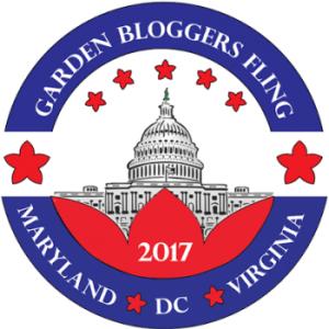 Fling-2017-Logo-300dpi