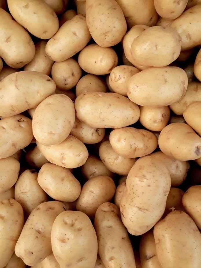photo of pile of potatoes
