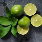 propiedades-limon-2