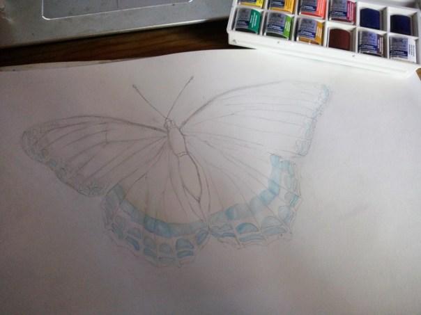 bleu-clair-papillon