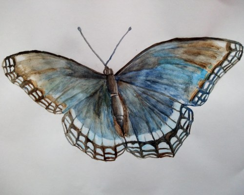 première aquarelle : un papillon pour débuter