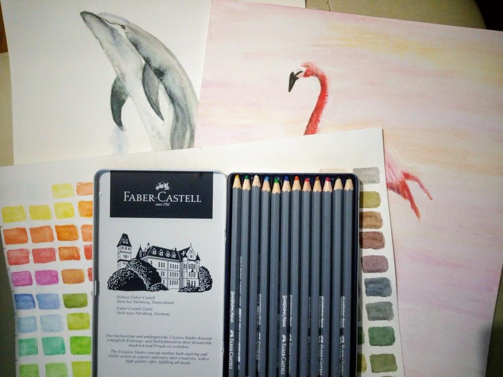 Crayons Aquarelles Le Guide D Utilisation Peinture