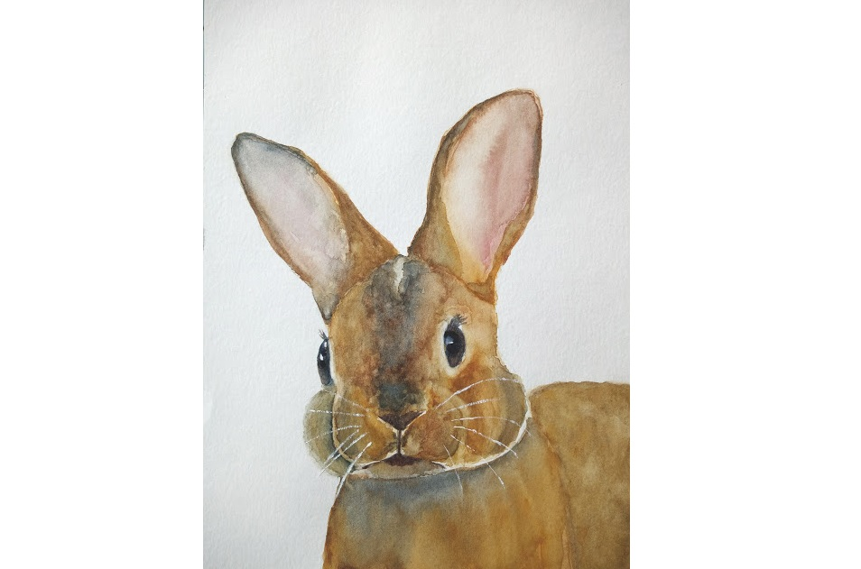 Comment peindre un lapin à l'aquarelle