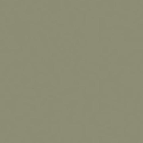 DULUX VALENTINE Peinture Crme De Couleur Vert Bronze Pas