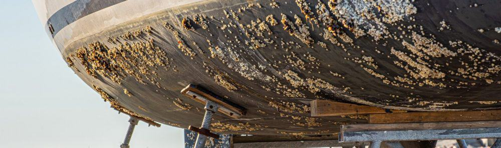 Produit entretien coque de bateau antifouling professionnel