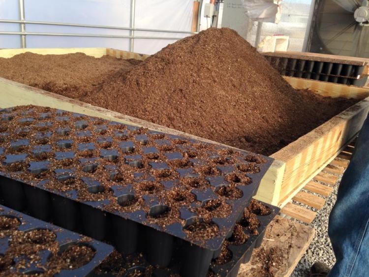 20110311 Soil