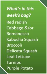 Week 3 Fall 2018_veg list.png