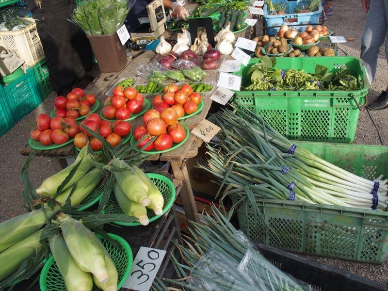 三崎朝市の野菜