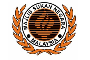msn_logo