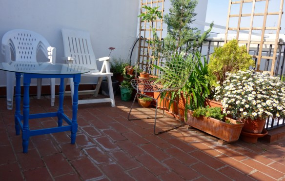Autre partie de la terrasse, avec des plantes d'ornements et aromatiques. © Fabienne Bodan