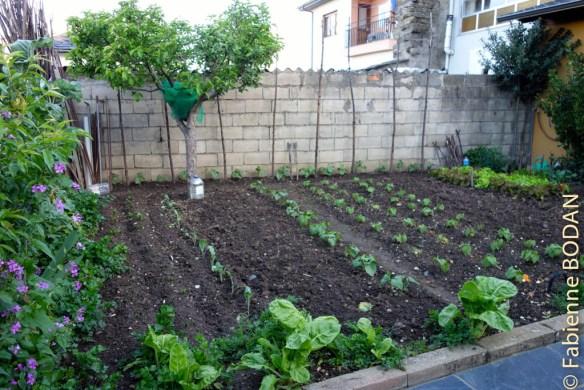 Le jardin de Lucia et Manuel, les deux charmants propriétaires de la Casa Luz...© Fabienne Bodan