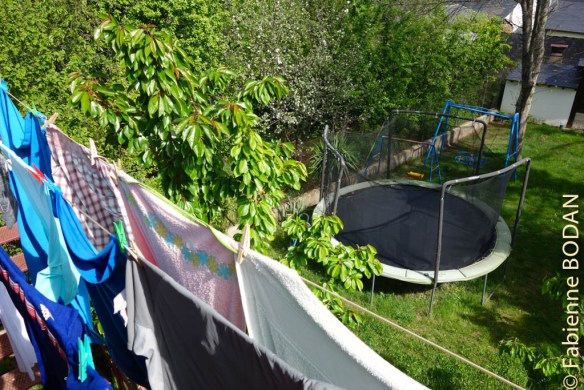 ...de même que le jardin et le trampoline des propriétaires...© Fabienne Bodan