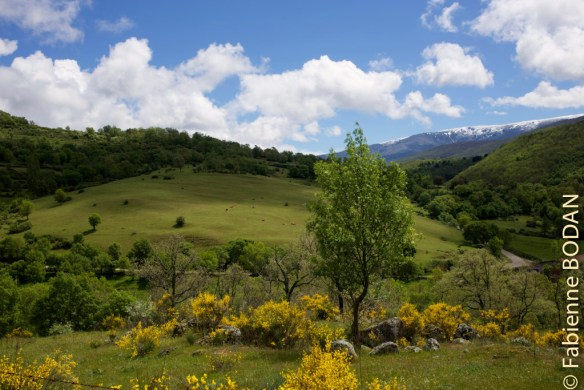 Avant d'arriver au petit village de montagne Calzada de Béjar, le soleil a remplacé la pluie, et la montagne s'élève après la plaine. © Fabienne Bodan