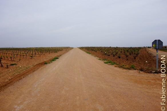 La Via de la Plata recèle aussi de longues lignes droites à l'instar du Camino Francés...© Fabienne Bodan