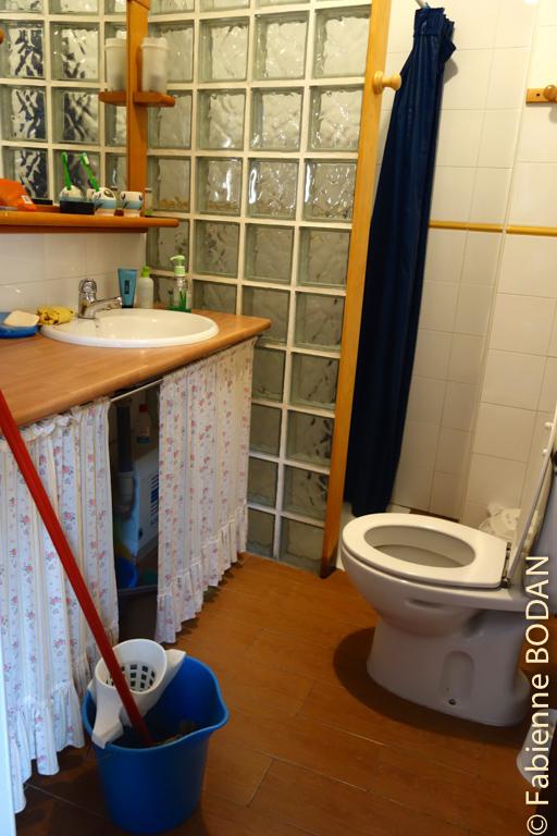 Salle de pain avec douche, lavabo, WC © Fabienne Bodan