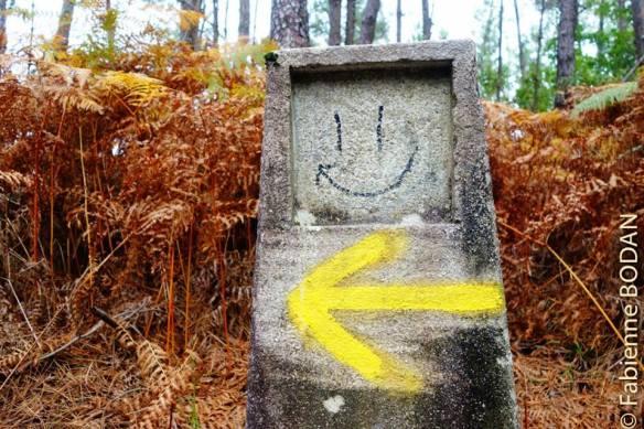 Suivez la flèche jaune pour ne pas vous perdre © Fabienne Bodan