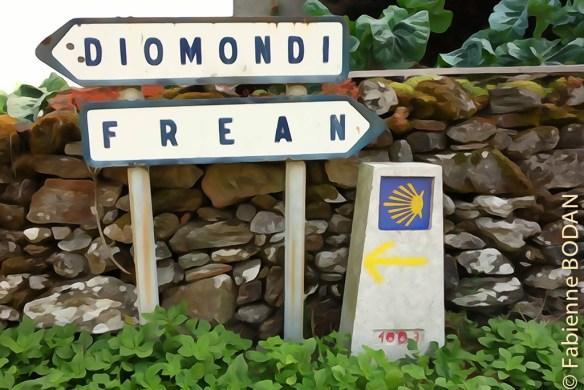 Diomondi Camino del Invierno étape 7