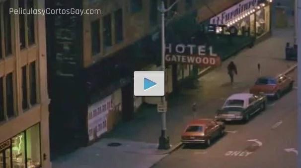 CLIC PARA VER VIDEO Mi Mundo Privado - My Own Private Idaho - PELICULA - EEUU - 1991