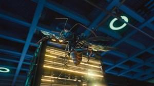 Ant-Man-Microverse-Photo-Antony