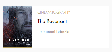 Cinematography Revenant
