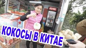 Первый раз Попробовал настоящий Кокос в Китае и как их проращивают