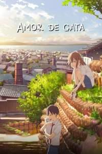 Amor de Gata (2020) HD Latino