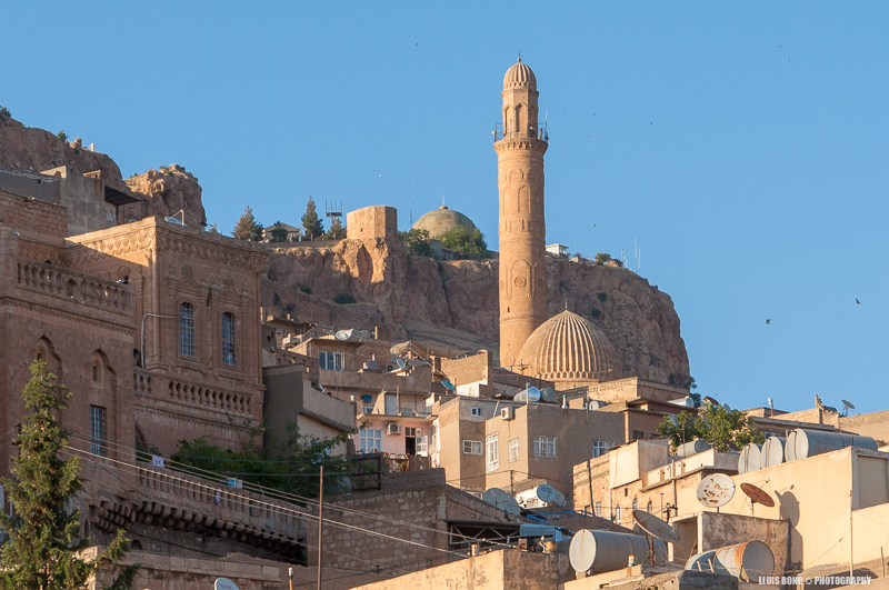 Cases a Mardin