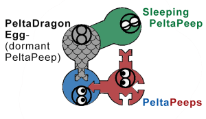 peep-counter-types