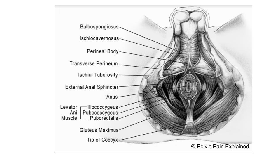 ReFurney a prostatitis után