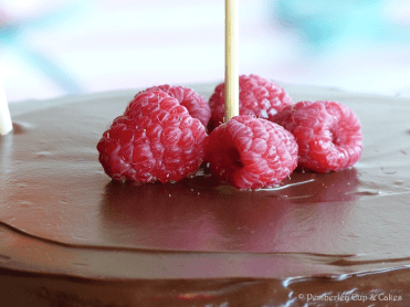 Devil's Food Cake - Raspberries