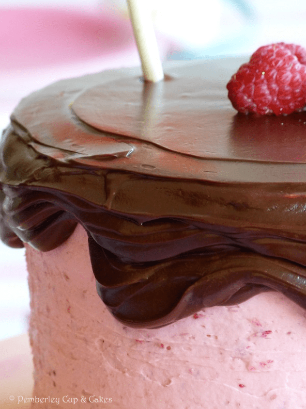 Devil's Food Cake with Raspberry Buttercream
