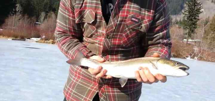 Ice Fishing Good Time BC Canada Ice Fishing Videos