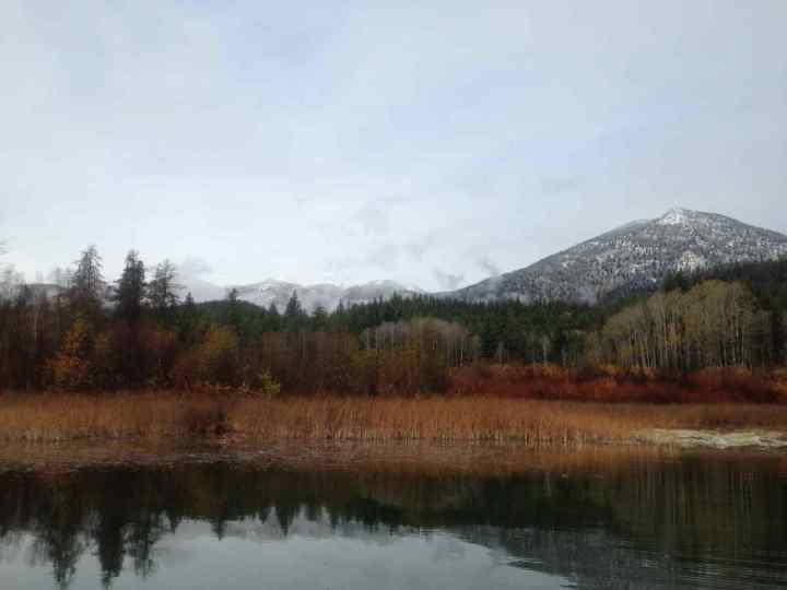 Pearson Pond