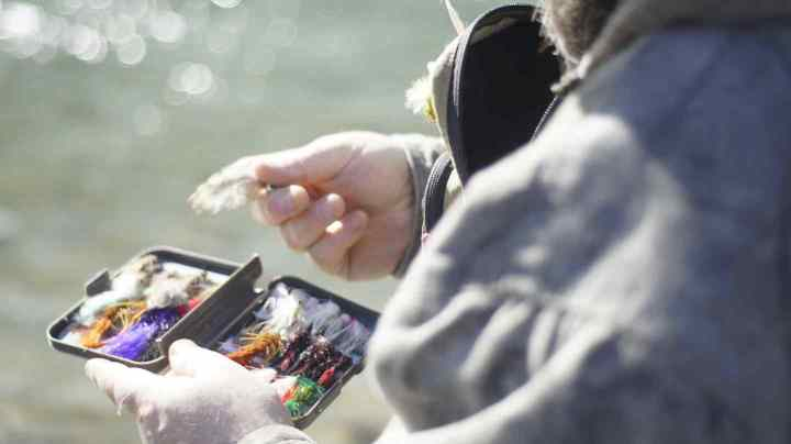 Selecting a Fly for fly fishing