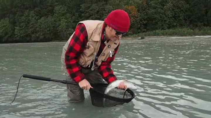 Fly fishing for Pink Salmon in British Columbia