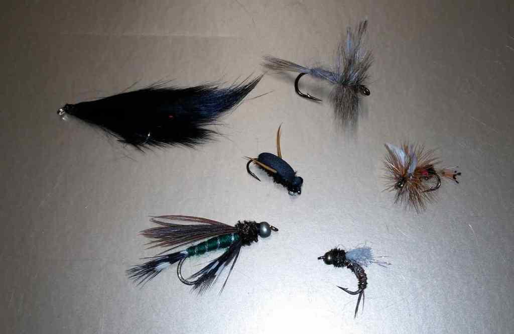 Flies to use on Gwyneth Lake